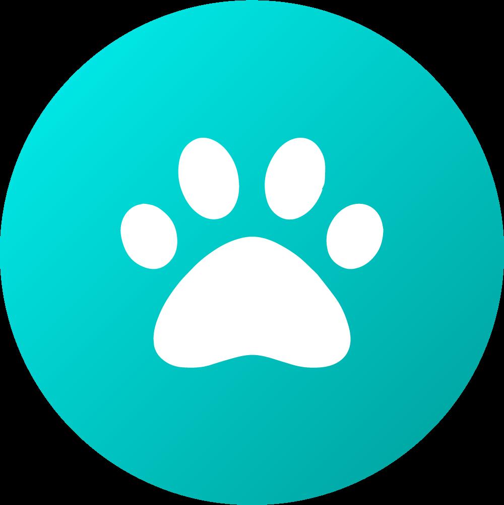Aussie Dog Catch Ball Blue Soft