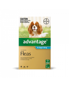Advantage Dog Medium 11-20lbs Aqua