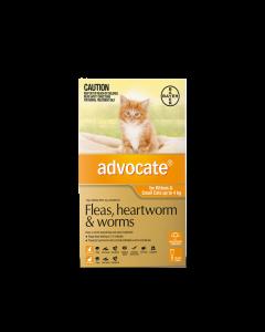 Advocate for cats under 4kg orange