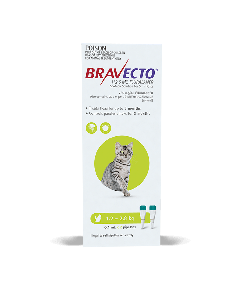 Bravecto Spot On Cat Small 2.6-6lbs Green 2 Pack
