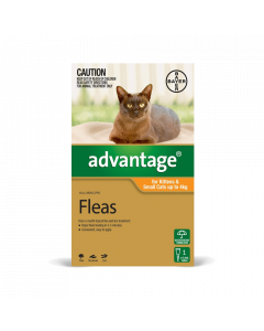 Advantage Kitten & Cat Small Up To 4kg Orange