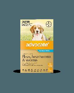 Advocate Dog Medium 4-10kg Aqua