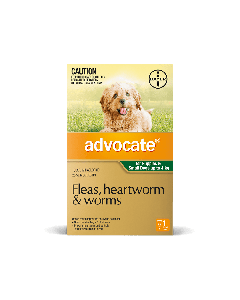 Advocate Puppy & Dog Small Up To 4kg Green