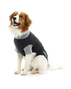 Buster Body Suit Dog
