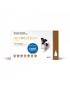 Revolution Dog Small 5-10kg Brown