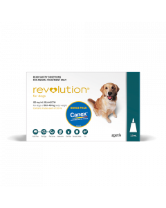 Revolution Dog Large 20-40kg Green