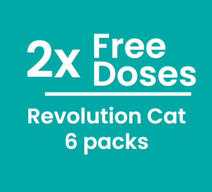 Revolution Cat 6 + 2 free doses