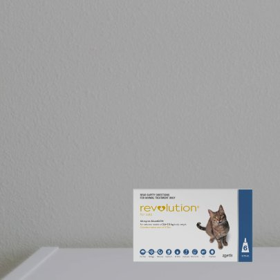 15% off Revolution for Cats 6 Pack