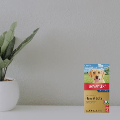 3 free doses Advantix 6 packs