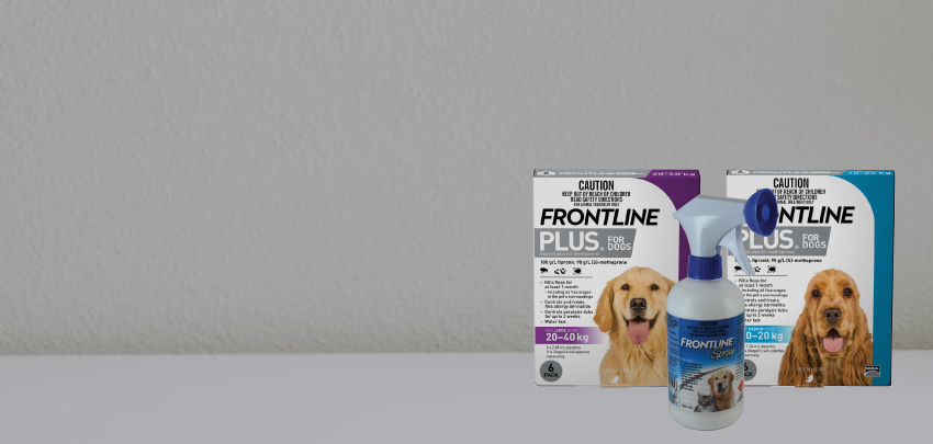 20% Off Frontline Plus and Sprays